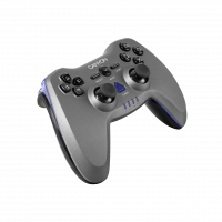 Canyon Wireless Gamepad CNS-GPW6